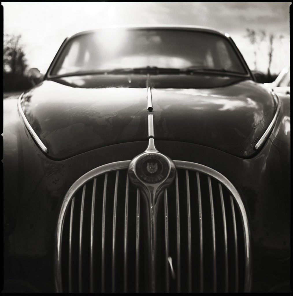 jaguar mkii nose