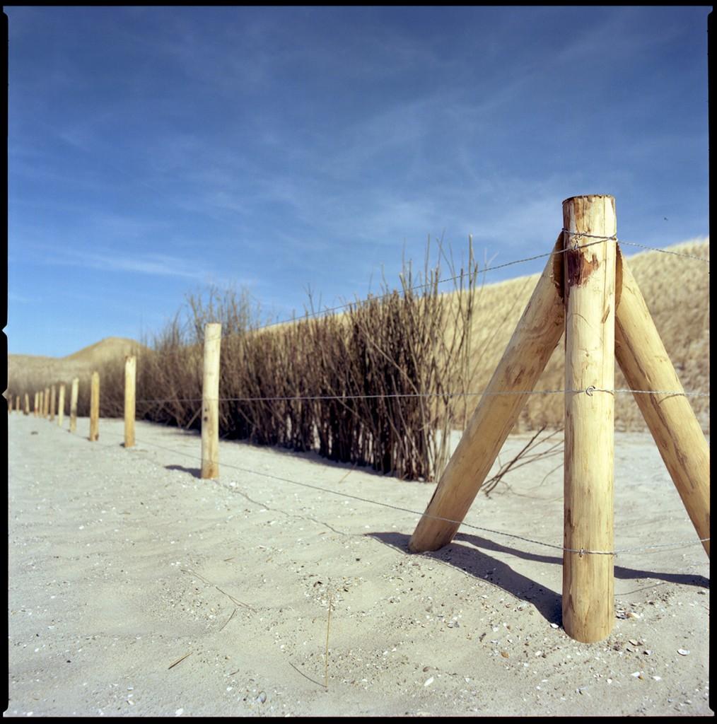 petten dunes fence work