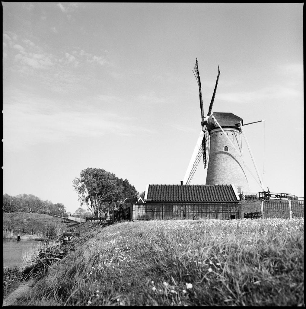 eersteling windmill